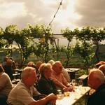 """世界中のオーガニックワインファンが、""""オーストリアワイン""""に注目する2つの理由"""