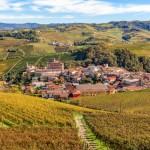 イタリアワインの王様「バローロ」の力強く、厳格な味わいの秘密とは?