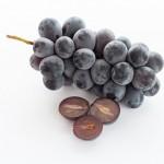 健康への効果にも注目されるワインの構成要素「タンニン」とは?