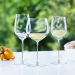 「白ワインの女王」シャルドネの味わいを引き出すグラスの条件とは