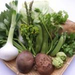 旬の食材を満喫 ワインに合う春野菜レシピは?