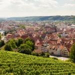 ビールだけじゃない! 生産地別ドイツワインの特徴