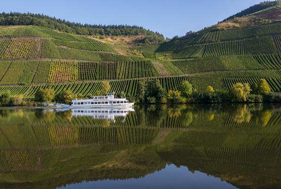 german_wine_2