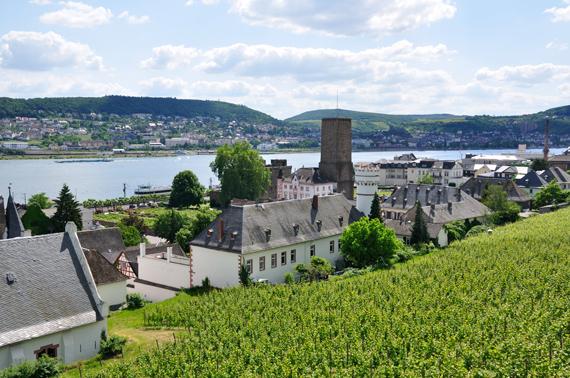 german_wine_3
