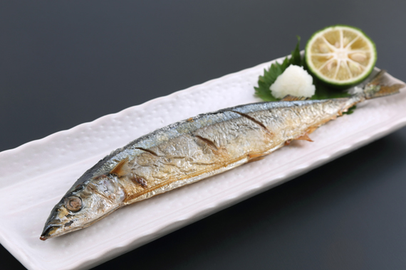 fish_in_season5